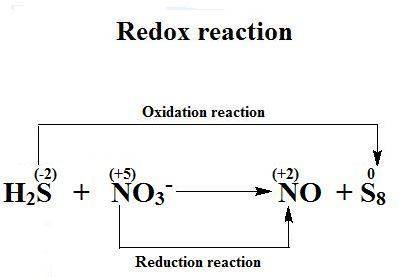 Balance the following skeleton reaction and identify the oxidizing and reducing agents:  h2s(g) + no
